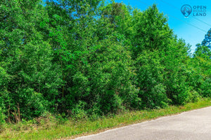 SOLD | 0.22 Acre Lot | Lemon St | Jackson County | Mississippi | $6,000 | Secure Today...