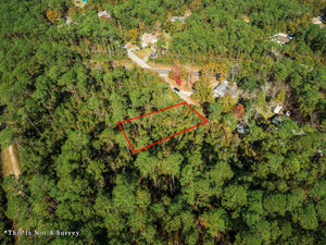 SOLD | 0.26 ACRES | ASH ST | JACKSON COUNTY | MISSISSIPPI| $5,500 | SECURE TODAY...