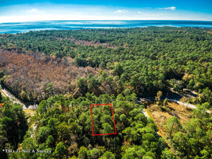 SOLD | 0.26 ACRES | BEACH ST | JACKSON COUNTY | MISSISSIPPI| $6,000 | SECURE TODAY...