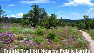 10 Acres | Lot 31 Tierra Verde Ranchettes  | Cibola County | New Mexico | $11,999 | Secure Today...