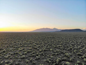 SOLD | 40 Acres | 80 Acres Available | Costilla County | Colorado | $12,499 | Secure Today...