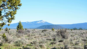 SOLD | 60 Acres | Klamath County | Oregon | $18,000 | Secure Today...
