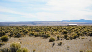 20 Acres | Lake County | Oregon | $9,500 | Secure Today....