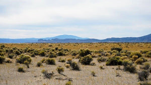 20 Acres | Lake County | Oregon | $6,875 | Secure Today....