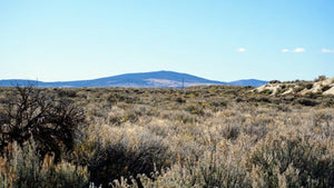20 Acres | Lake County | Oregon | $8,500 | Secure Today....