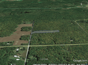 SOLD | 5.00 Acres | Polk County | Wisconsin | $18,000 | Secure Today...