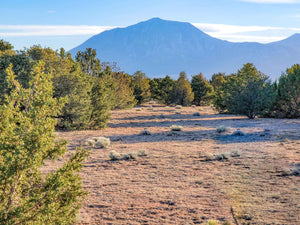 UNDER CONTRACT | 35 ACRES | HUERFANO COUNTY | COLORADO | $40,000 SECURE TODAY...