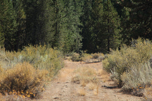 SOLD | 10 Acres | Klamath County | Oregon | $7,499 | Secure Today...