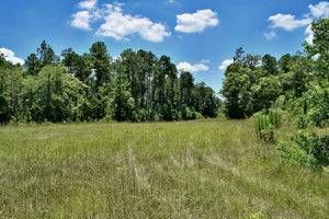 40 ACRES | JACKSON COUNTY | MISSISSIPPI | $59,997 | SECURE TODAY....