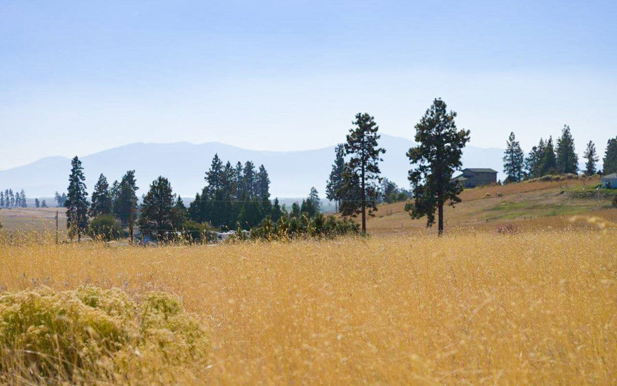 0.40 ACRES | KLAMATH COUNTY | OREGON | $5,499 | SECURE TODAY...