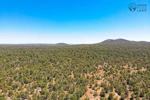 SOLD | 10 Acres | Lot 25 Tierra Verde Ranchettes | Cibola County | New Mexico | $11,999 | Secure Today...