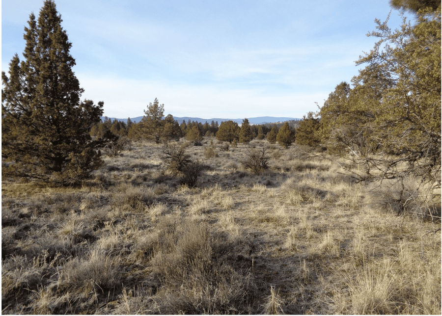 SOLD | 18 Acres | Klamath County | Oregon | $5,000 | Secure Today...