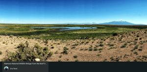 SOLD | 40 Acres | Alamosa County | Colorado | $16,999 | Secure Today....