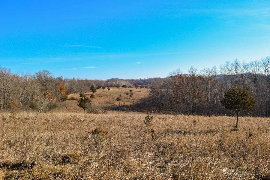 PENDING | 60 Acres | Vernon County | Wisconsin | $220,000 | Secure Today...