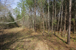 18.93 Acres | Newberry County | South Carolina | $80000 | Secure Today...