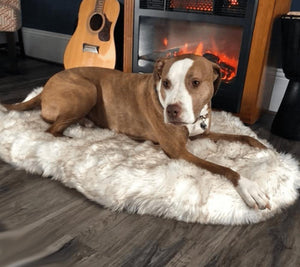 Orthopedic Sofa Dog Bed With Vegan Fur, Memory Foam - Inspired Uplift Store