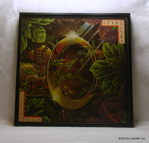 "SPYRO GYRA Framed Album Cover ""Catching The Sun"" (1980)"