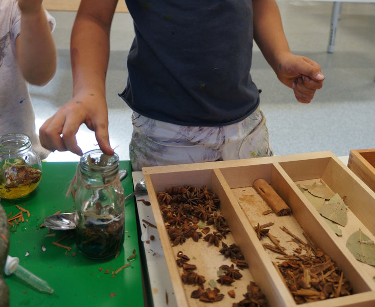 Art class - Sense of smell - Perfume making