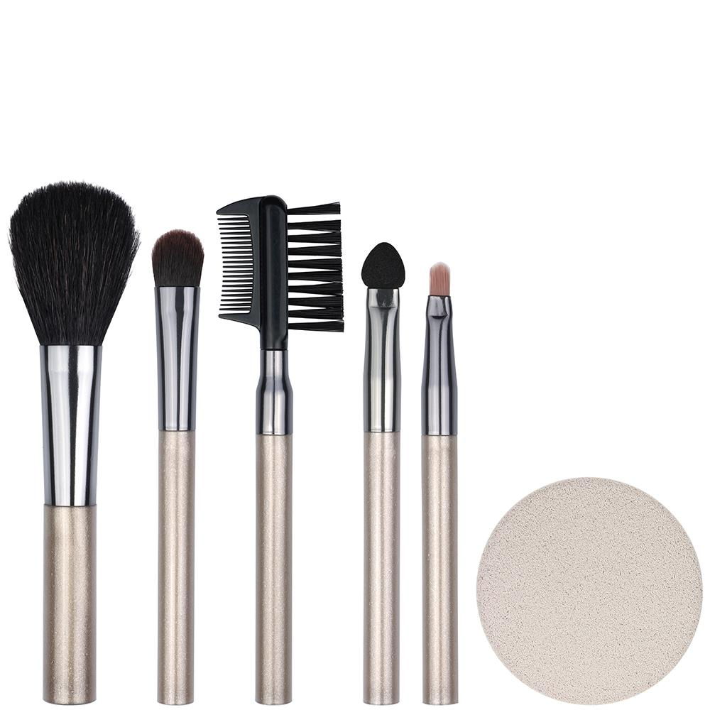 Essential Cosmetic Tool Kit + Sponge