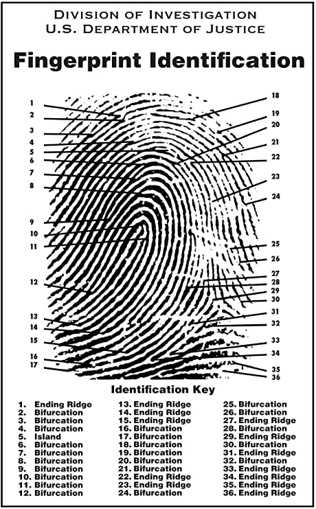 Crime Scene Fingerprint Chart