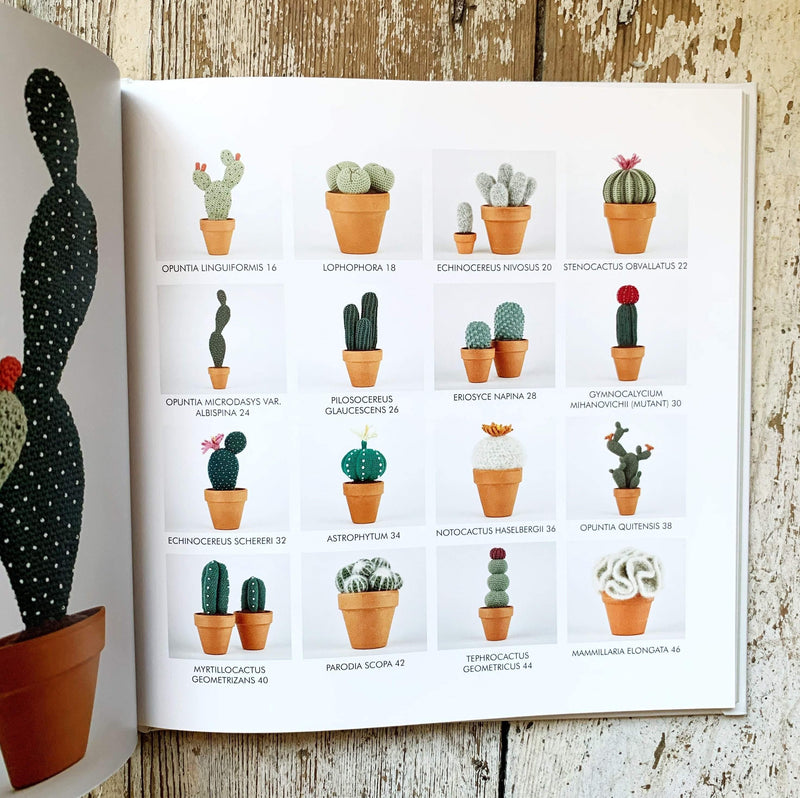 Crocheted Cactuses Search Press Book