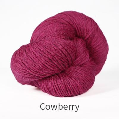 Cumbria Fingering The Fibre Co Yarn Cowberry