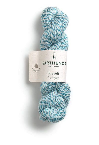 Preseli Garthenor Yarn Harbour Marl