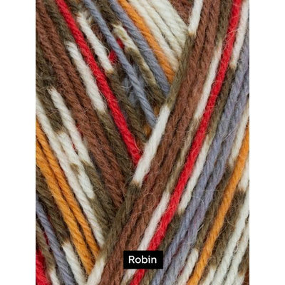 Robin 4Ply Christmas Sock Yarn West Yorkshire Spinners Yarn