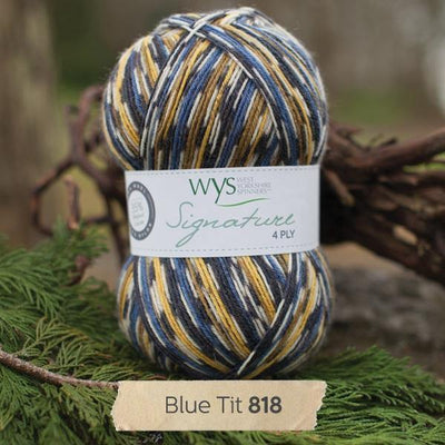 Signature 4Ply Sock Yarn - Country Birds West Yorkshire Spinners Yarn Blue Tit 818