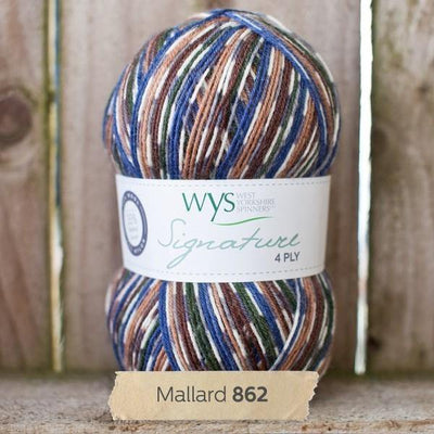 Signature 4Ply Sock Yarn - Country Birds West Yorkshire Spinners Yarn Mallard 862