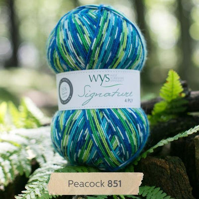 Signature 4Ply Sock Yarn - Country Birds West Yorkshire Spinners Yarn Peacock 851