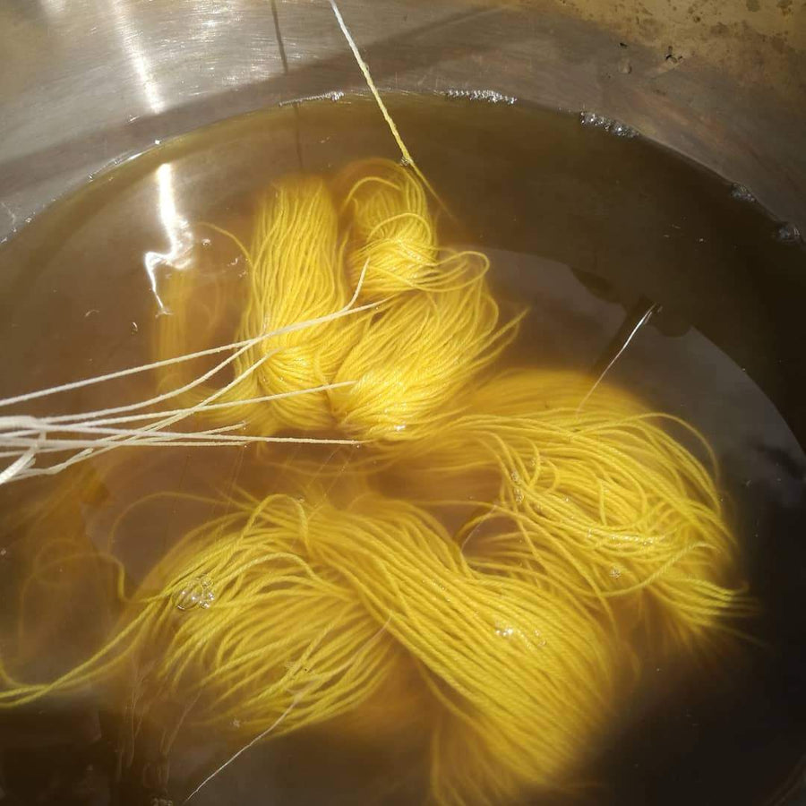 Sun 2nd Dec: Plant Dyeing Workshop with Emma Kylmala tribeyarns Event