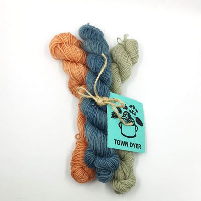 Town Dyer BFL Mini-Bundles Town Dyer Yarn Madder, Indigo, Nettle/Iron