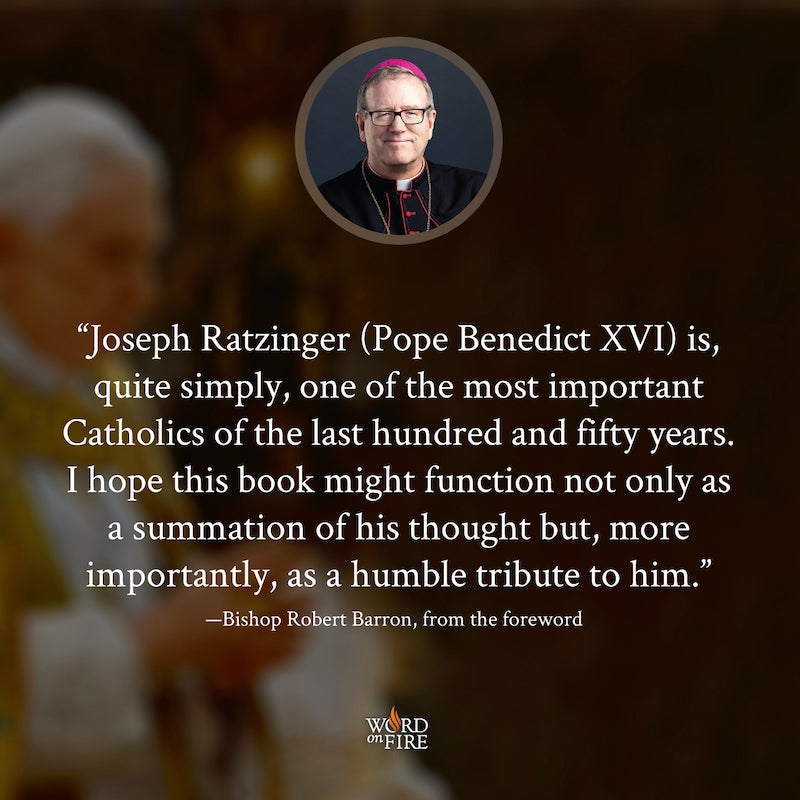 products/BXVI-TESTIMONIAL-Bishop-Barron.jpg