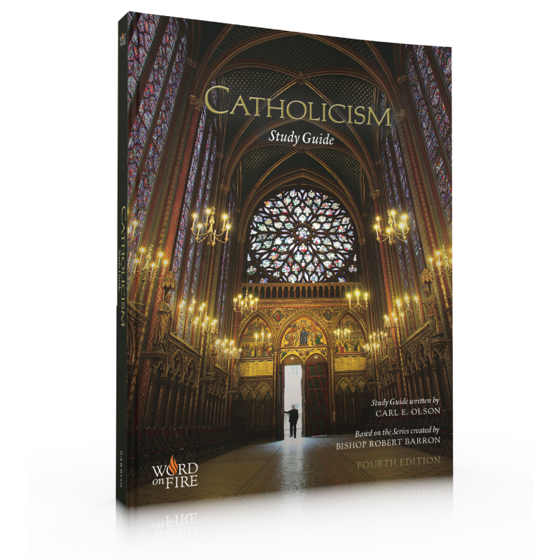 products/Catholicism-Perfect-Bound-Study-Guide-Front.png