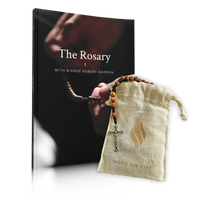 The Word on Fire Rosary + Book Bundle