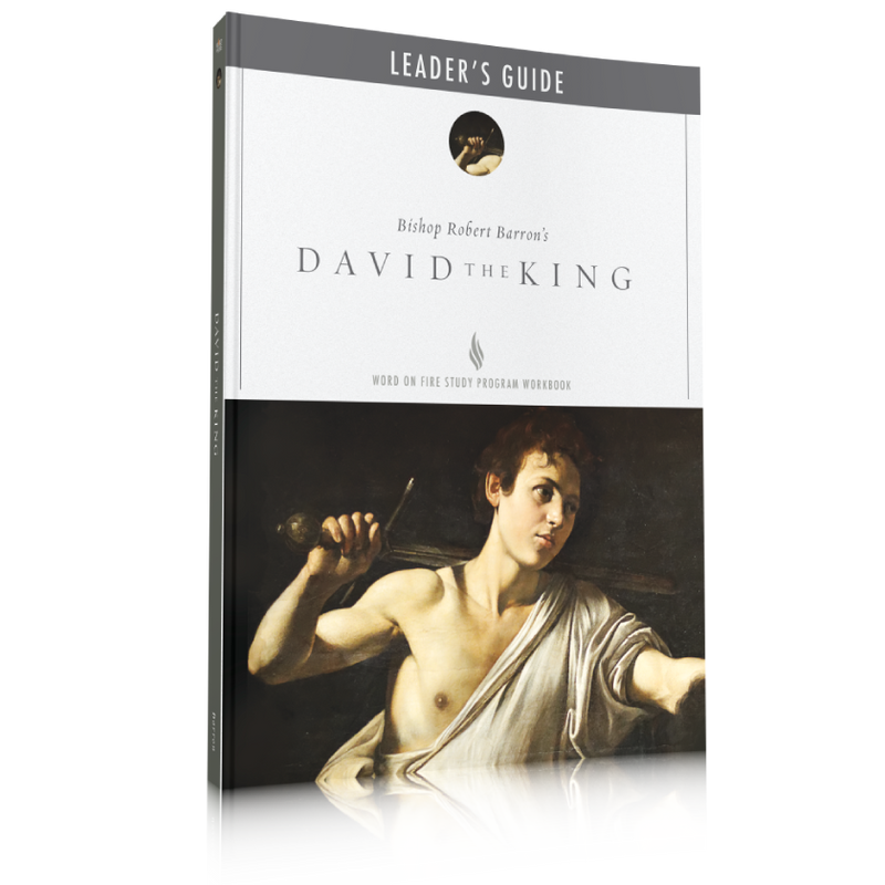 products/perfect-english-david-the-king-leader-guide.png