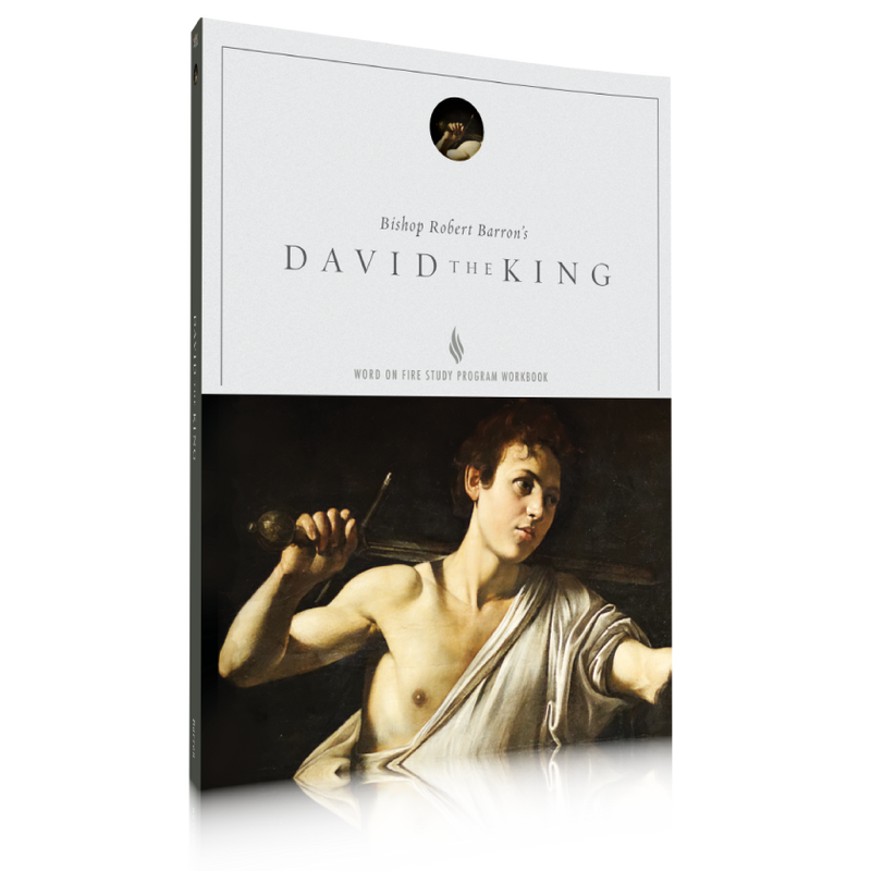 products/study-guide---david-the-king.png
