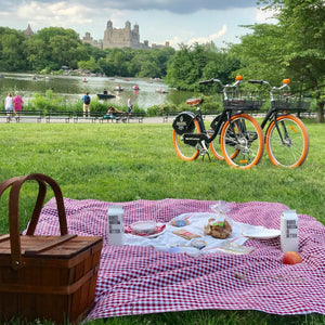 Picnic and Bike Rental