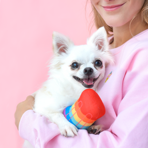 Popsicle Squeak Toy