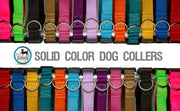Solid Color Dog Collars