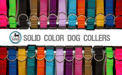 Solid Color Dog Collars - Aw Paws