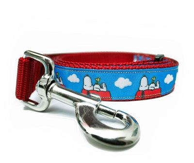 Dog Leashes - Aw Paws