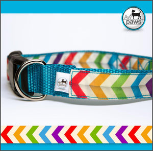 Chevron Rainbow Dog Collar - Aw Paws