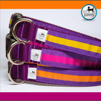 Stripes Purples Dog Collar - Aw Paws