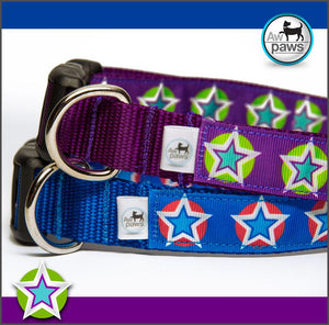 Stars 1 Dog Collar - Aw Paws