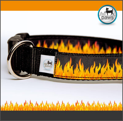 Fire Dog Collar - Aw Paws