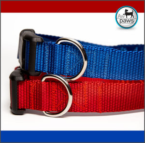 Red or Royal Blue Dog Collar
