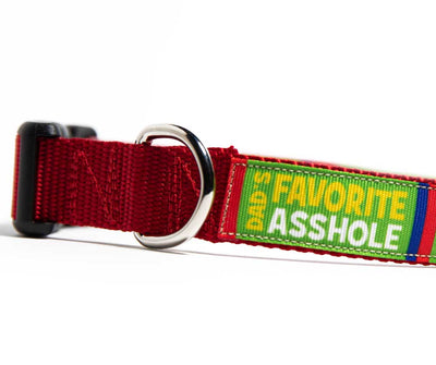 Dad's Favorite Asshole Dog Collar