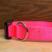 Hot Pink Dog Collar